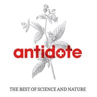 Antidote Queenstown