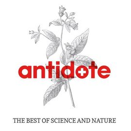 Antidote Octagon