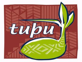 Waitemata DHB Tupu - Pacific Alcohol & Other Drug & Gambling Service